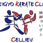 logo_skcc