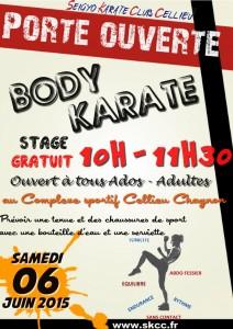 2015-06-06-SKCC_porte-ouverte-body