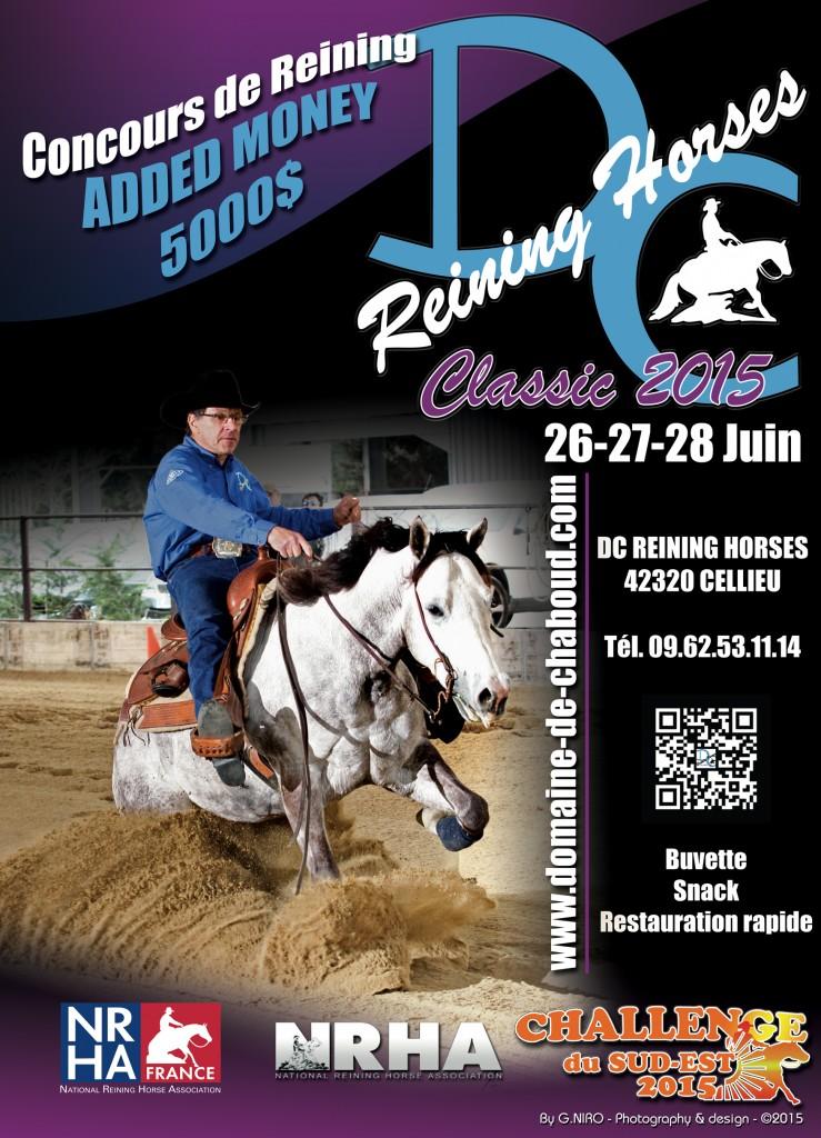 2015-06-28-reining_horses
